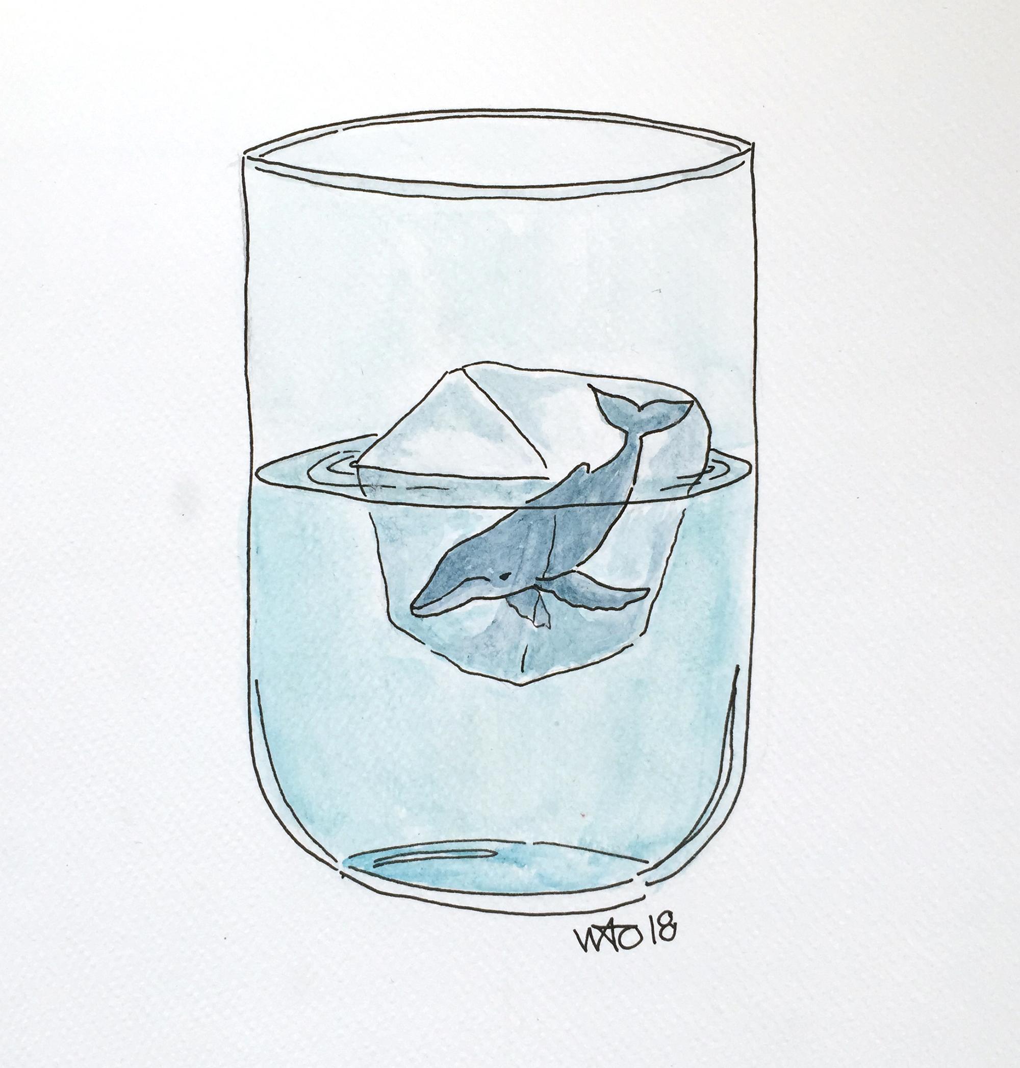 illustration klima climate change Hval isbjerg