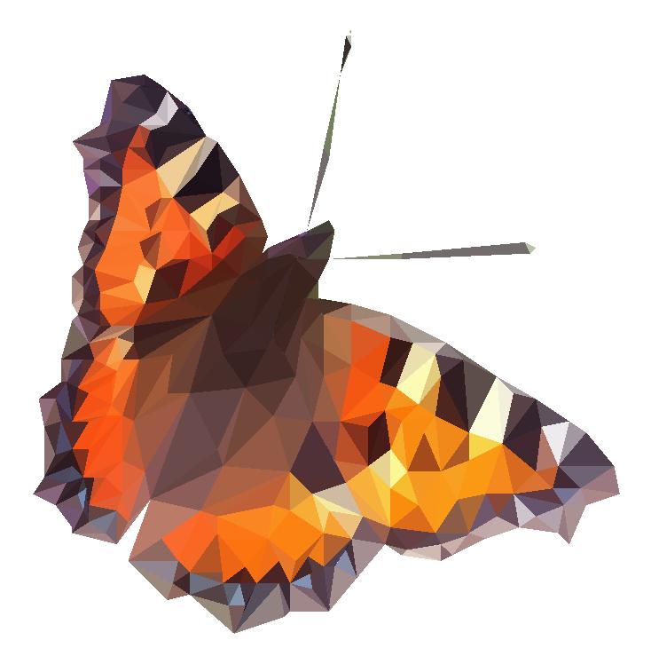 butterfly sommerfugl illustration low poly