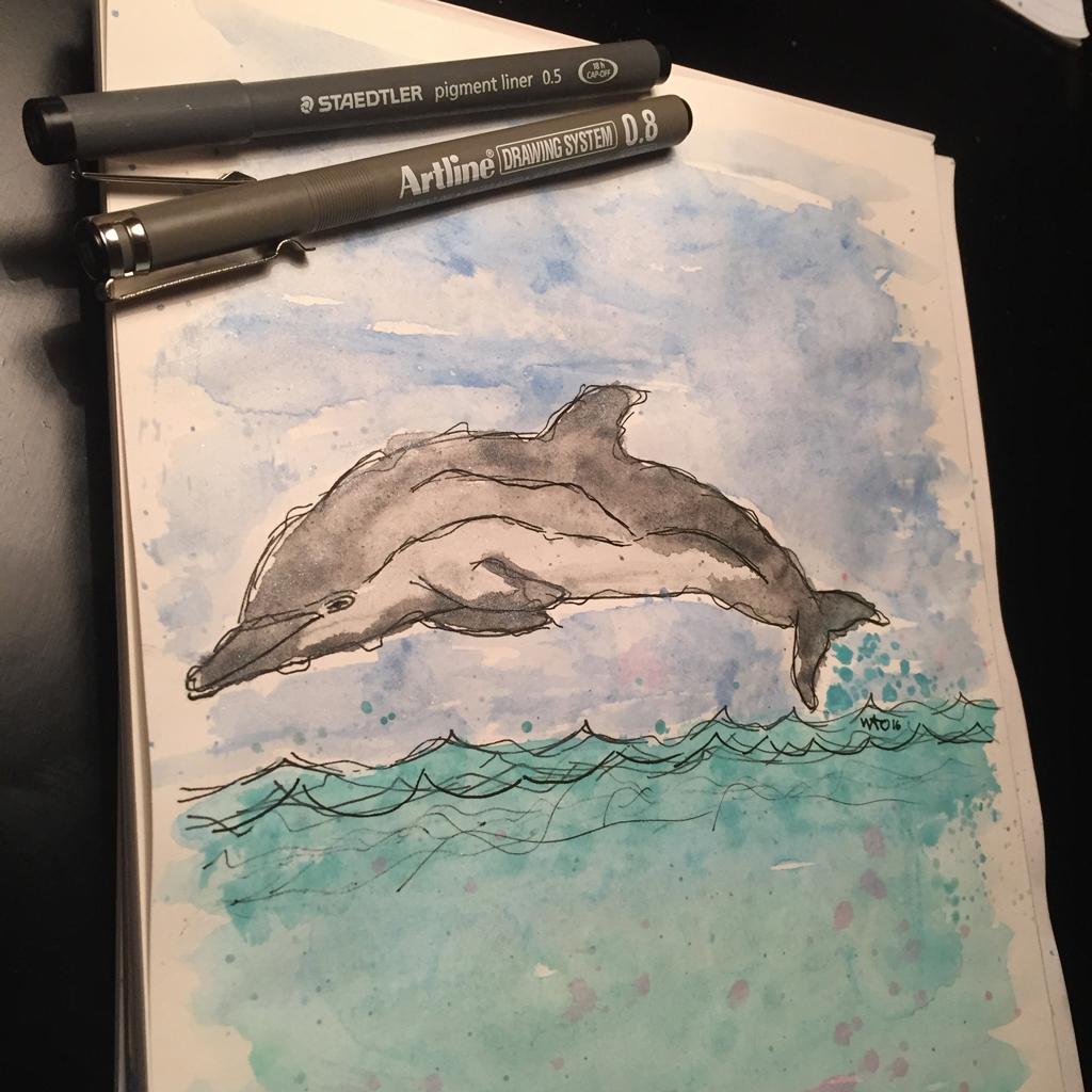 dolphin delfin akvarel illustration illustrator